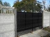 Ворота с элементами полимерной ковки